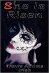 She Is Risen: The Gun Control Case Studies - Travis Adams Irish,  Tierney Roberts (Illustrator)