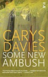 Some New Ambush (Salt Modern Fiction) - Carys Davies