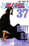 Bleach, Vol. 37: Beauty is so Solitary - Tite Kubo