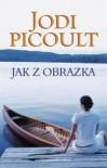 Jak z obrazka - Jodi Picoult