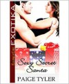 Sexy Secret Santa - Paige Tyler