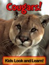 Cougars! Learn About Cougars and Enjoy Colorful Pictures - Look and Learn! (50+ Photos of Cougars) - Becky Wolff