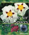 Plants for Small Spaces - Clive Lane