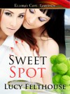 Sweet Spot - Lucy Felthouse
