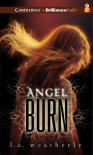 Angel Burn (Angel Trilogy, #1) - L.A. Weatherly