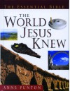 The Essential Guide to the World Jesus Knew - Anne Punton
