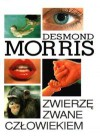 Zwierzę zwane człowiekiem - Desmond John Morris
