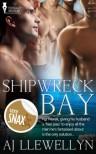 Shipwreck Bay - A.J. Llewellyn