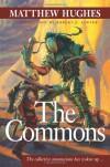 The Commons - Matthew Hughes
