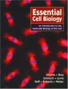 Essential Cell Biology: An Introduction To The Molecular Biology Of The Cell - Bruce Alberts, Alexander Johnson, Dennis Bray