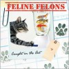 Feline Felons: Caught in the Act - Debbie Keller, Ariel Books, Diane Hobbing