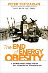 The End of Energy Obesity: Breaking Today's Energy Addiction for a Prosperous and Secure Tomorrow - Peter Tertzakian, Keith Hollihan