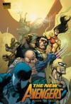 New Avengers Vol. 6: Revolution (v. 6) - Brian Michael Bendis