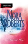 Jedyna taka noc - Nora Roberts