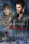 The Christmas Throwaway - R.J. Scott