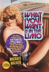 What You Want Is in the Limo: On the Road with Led Zeppelin, Alice Cooper, and the Who in 1973, the Year the Sixties Died and the Modern Rock Star Was Born - Michael  Walker