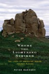 Where the Lightning Strikes: The Lives of American Indian Sacred Places - Peter Nabokov
