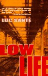Low Life: Lures and Snares of Old New York - Luc Sante
