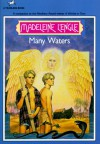 Many Waters (Time, #4) - Madeleine L'Engle, Peter Sís
