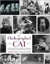 The Photographed Cat: Picturing Human-Feline Ties, 1890-1940 - Lauren Rolfe, Arnold Arluke