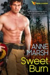 Sweet Burn - Anne Marsh