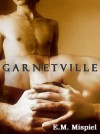 Garnetville: A Gay Novel - E.M. Mispiel