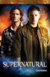 Supernatural, Bd. 4: Caledonia - Brian Wood;Grant Bond