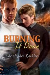 Burning It Down - Christopher Koehler