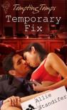 Temporary Fix - Allie Standifer