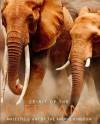 Spirit of the Elephant - Gill Davies, Philip de Ste. Croix