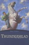 Thunderhead (Egmont Classics) - Mary O'Hara