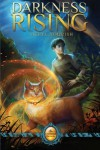 Darkness Rising (Catmage Chronicles, #1) - Meryl Yourish