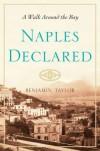 Naples Declared - Benjamin Taylor