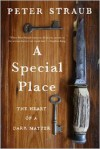 A Special Place: The Heart of a Dark Matter - Peter Straub
