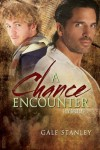 A Chance Encounter - Gale Stanley