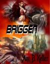 Briggen - B. Keller Ann