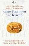 Keine Posaunen vor Jericho - Neil Asher Silberman, Israel Finkelstein