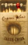 Ciemność płonie - Jakub Ćwiek
