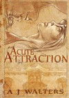 An Acute Attraction - A.J.  Walters