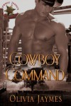 Cowboy Command (Cowboy Justice Association) - Olivia Jaymes