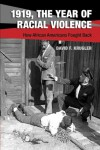 1919, The Year of Racial Violence: How African Americans Fought Back - David F. Krugler