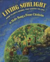 Living Sunlight: How Plants Bring The Earth To Life - 'Molly Bang',  'Penny Chisholm'
