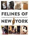 Felines of New York: A Glimpse Into the Lives of New York's Feline Inhabitants - Jim Tews
