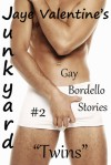 "Junkyard: Gay Bordello Stories: #2 ""Twins"" - Jaye Valentine"