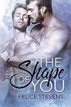 The Shape of You - Felice Stevens