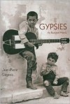 Gypsies: An Illustrated History - Jean-Pierre Leigeois,  Tony Berrett (Translator)