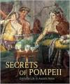 Secrets of Pompeii: Everyday Life in Ancient Rome - Emidio De Albentiis, Alfredo Foglia