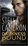 Darkness Bound - Stella Cameron