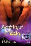 Amethyst Moon - Ann Mayburn