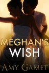 Meghan's Wish: A Novella (Love and Danger) - Amy Gamet